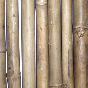 Black Bamboo Fence