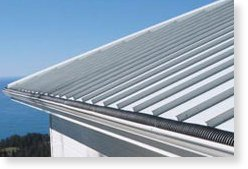 Raintube Gutter Protection System In The Eco Mart Catalog